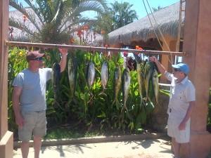 satfishing